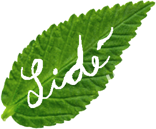 04-lide-leaf