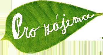 05-pro-zajemce-leaf