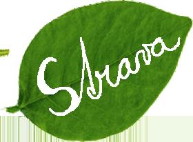 06-strava-leaf