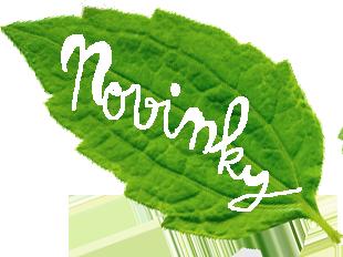 07-novinky-leaf